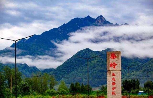陕西秦岭保护再升级,违建最高罚两百万。