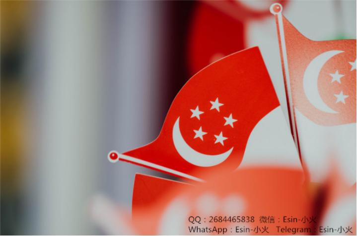 新加坡移民新政策 2019,最齐全的新加坡移民指南! 滚动 第3张