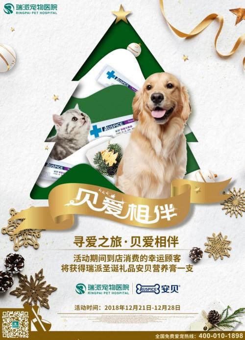 投身公益,瑞派宠物联合安贝发起关爱小动物倡议书