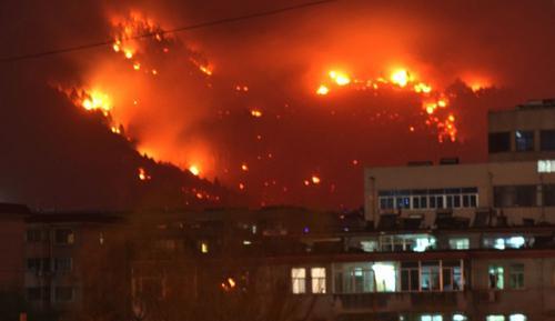 泰山发生大火已被扑灭 起火原因不明[多图]
