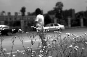 6月8日,岳麓区杜鹃路附近,黄俊雅称在这附近练车时,遭遇教练强吻。图/记者辜鹏博