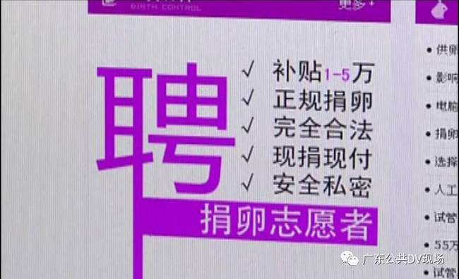 广州卖卵黑市:少女卖卵一次赚1.5万 有人差点丢命_图3-1