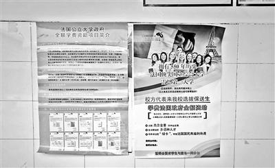 揭秘法国大学遴选骗局:官方从未有类似授权_图1-2