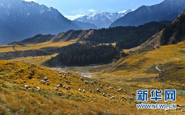 【祁连山国家公园体制试点】-宝地 中国十大国家公园体制试点都在哪儿