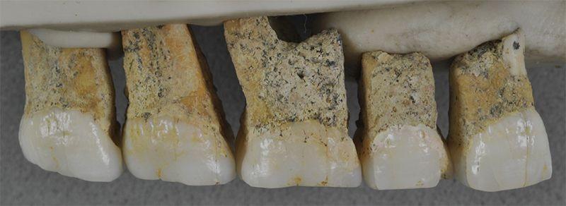 菲律宾洞穴发现新人类物种遗骸,生活在5万年前_图1-3