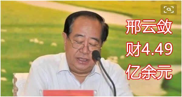 邢云敛财4.49亿余元