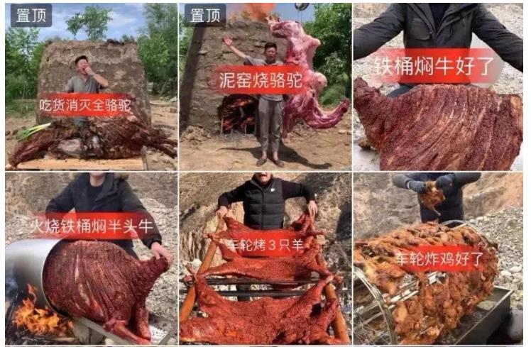 某吃播发布的野外烤骆驼等动物视频,后被网友质疑浪费食物,将所有视频删除或隐藏。手机截图