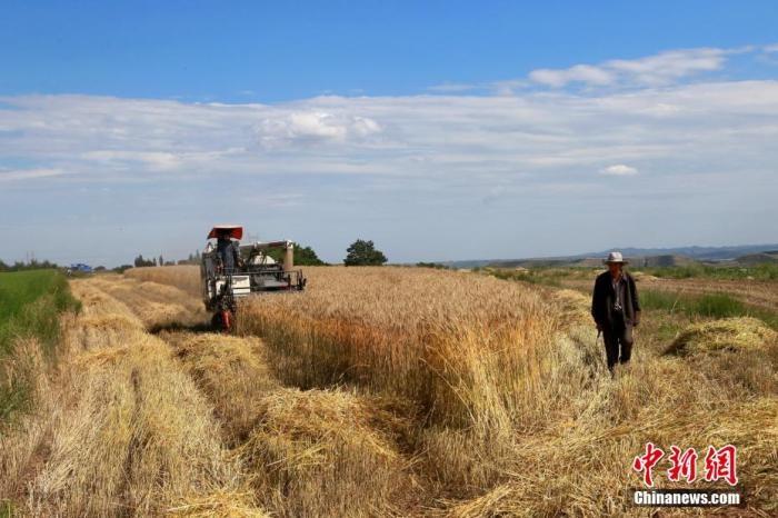 秋粮生产情况如何?丰收有保障吗?中国农业农村部回应_图1-4