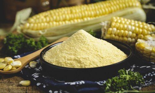 玉米今日价格